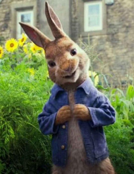 peter rabbit denim jacket