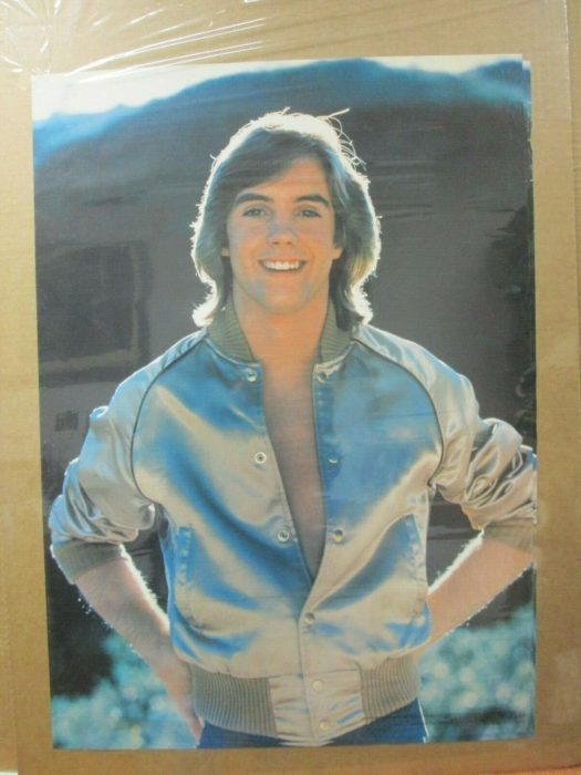 The Hardy Boys 1977 Jacket