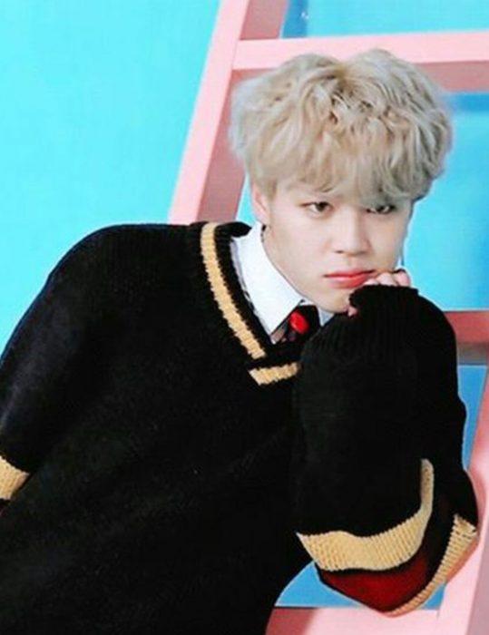 singer bts jimin sweater